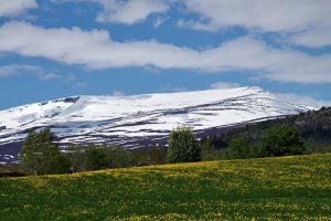 Norwegen, 20.06.2015