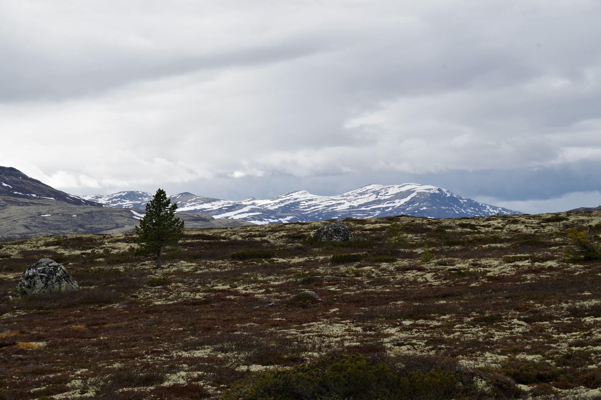 Norwegen, 18.06.2015