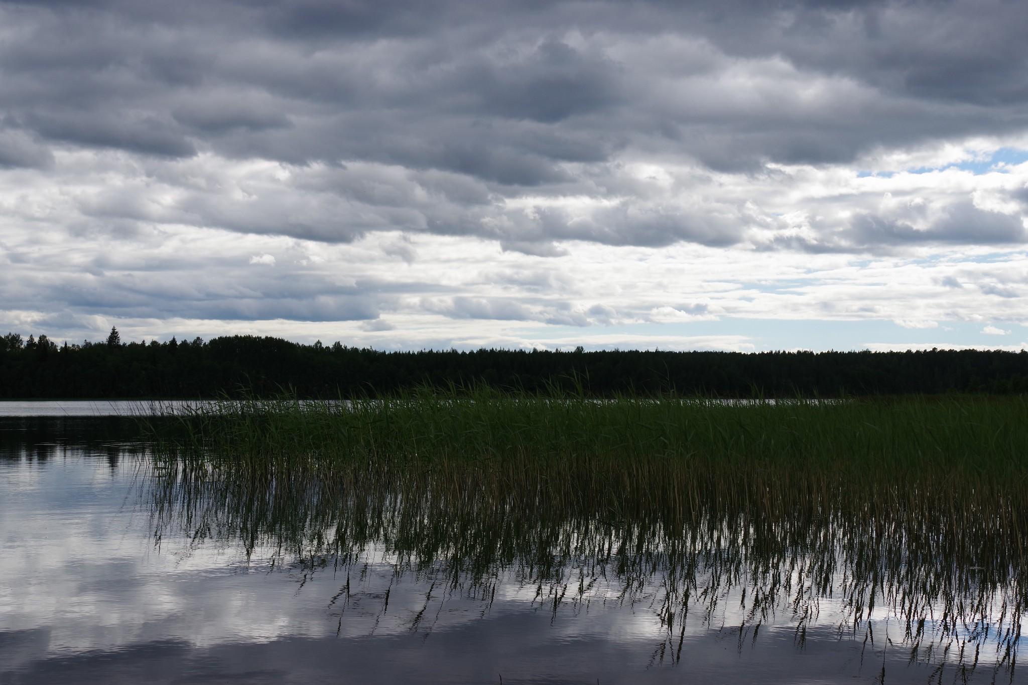 Schweden, 25.06.2018